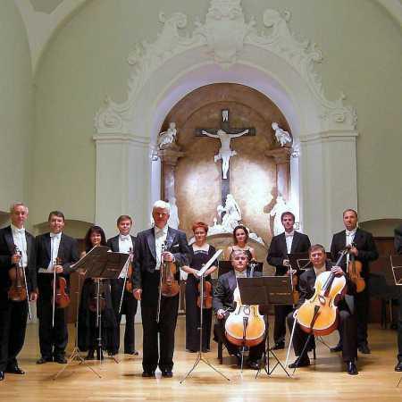Čeští komorní sólisté