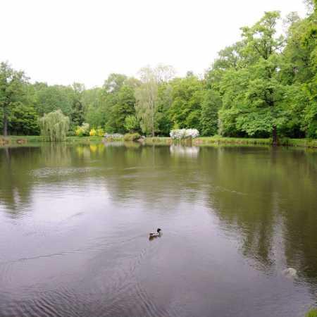 Park Leśnicki