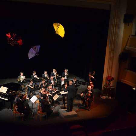 Plzeňský smyčcový orchestr (PSO)