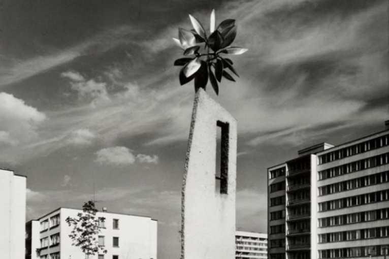 Zdeněk Vožehlík: Photographs