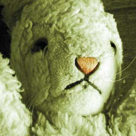 White Rabbit Red Rabbit #6