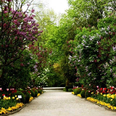 University of Warsaw Botanic Garden