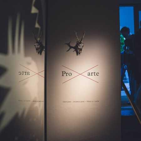 Galerie Pro arte