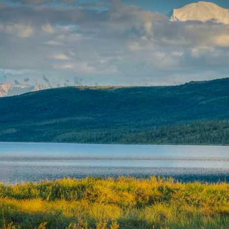 Aljaška – tváří v tvář severské divočině
