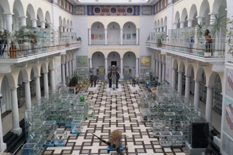 Stała ekspozycja Muzeum Geologicznego Państwowego Instytutu Geologicznego