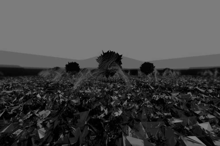 Shadow Meadow