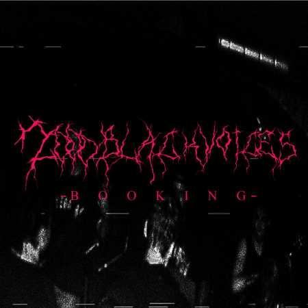 2000blackvoices Booking