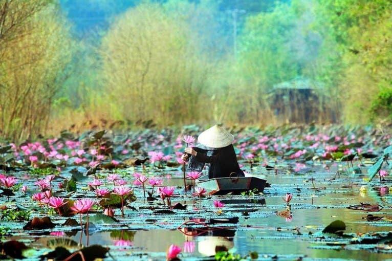 Richard Krajník: Můj Vietnam