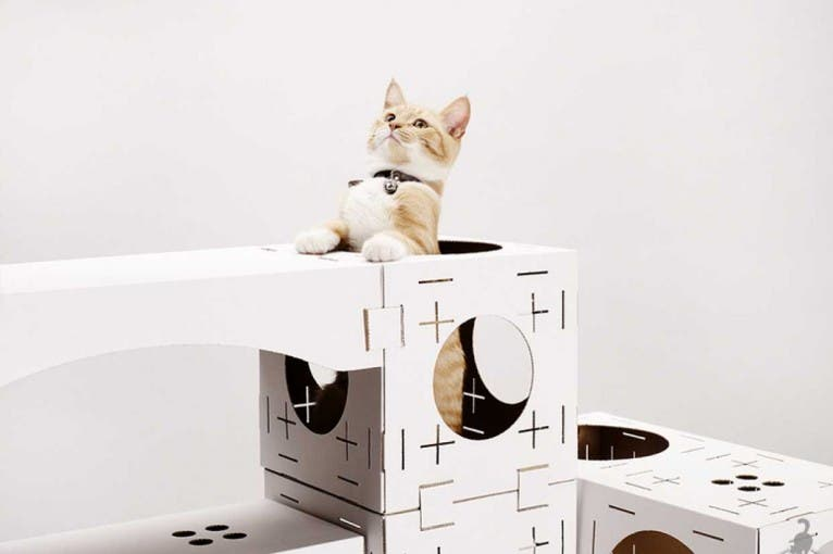 Kocie Targi