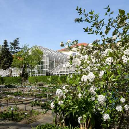 The Botanical Garden of the Faculty of Science Masaryk University