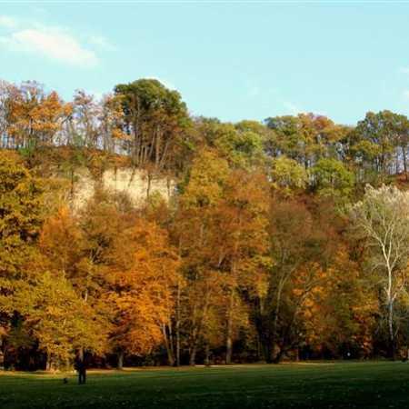 Park Peliny