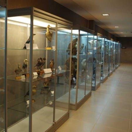 Muzeum i Instytut Zoologii PAN