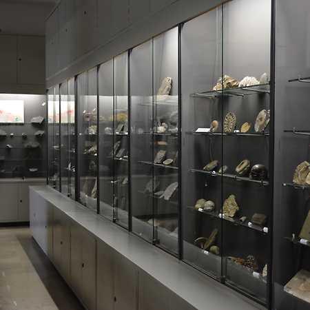 Muzeum Geologiczne im. Henryka Teisseyre we Wrocławiu