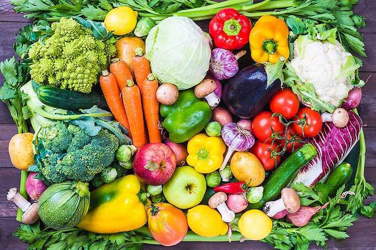 Rostlinná strava a její vliv na zdraví