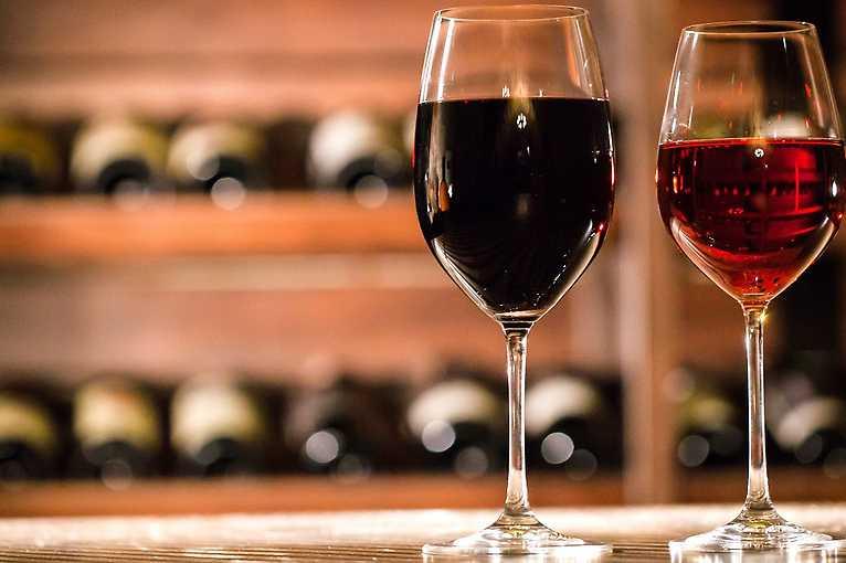Degustace vinařství Vican