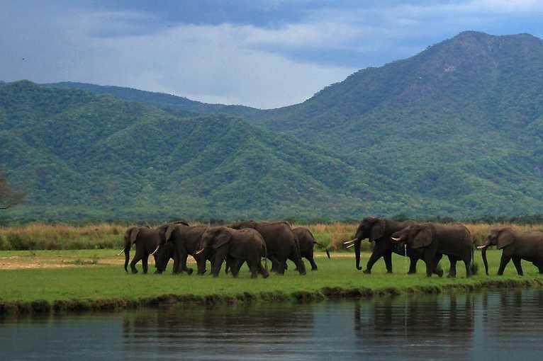 Stanislav Rojík: Nejlepší safari ve východní Africe