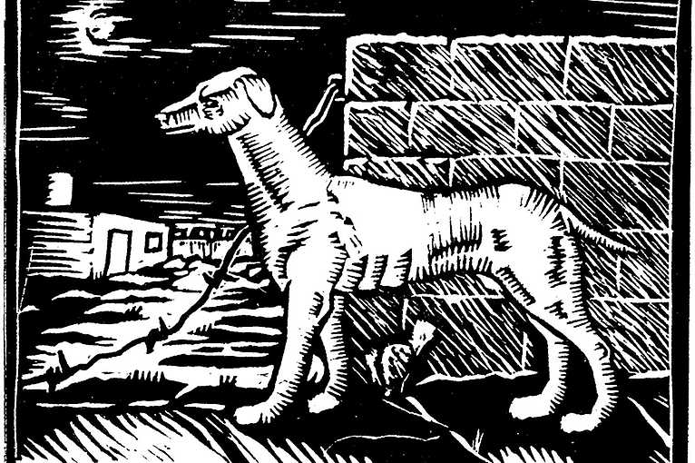 Štěpán Brož: Joyful Medieval Days