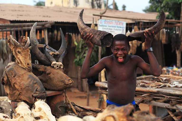 Tomáš Kubeš: Západní Afrika