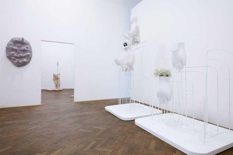 Komentovaná prohlídka výstavy Éntomos s Annou Hulačovou