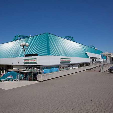 RT Torax Arena