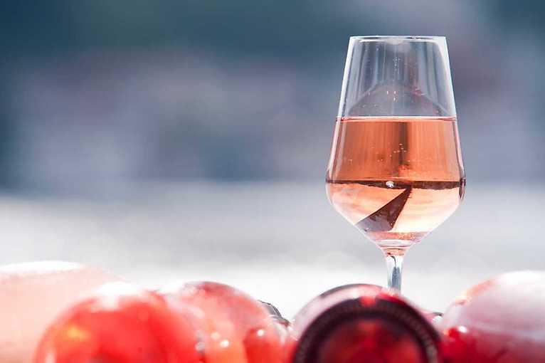 Degsutace: Víno Hort