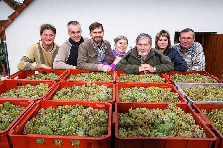 Vinařství Špalek