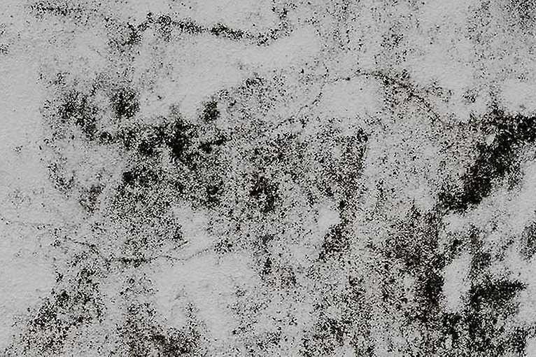 Komentovaná prohlídka a dernisáž výstavy Bactihub