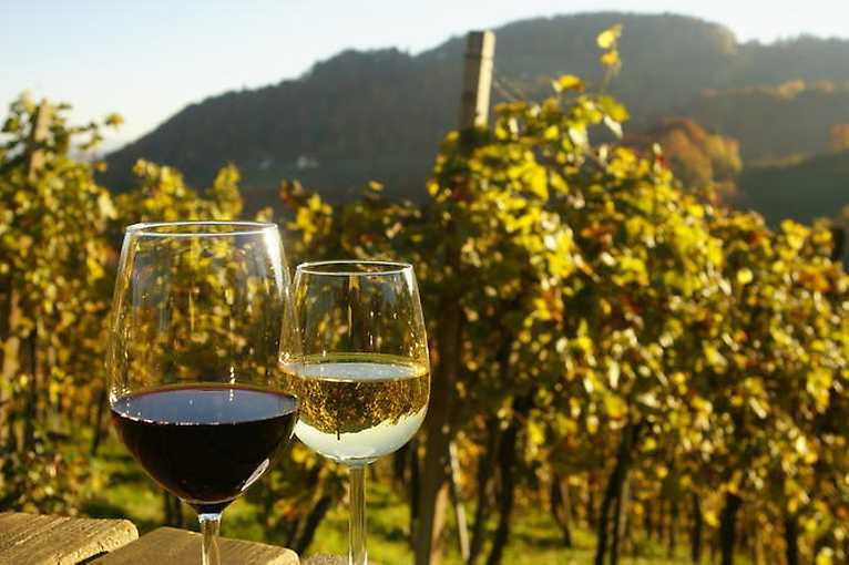 Večer s rakouskými víny