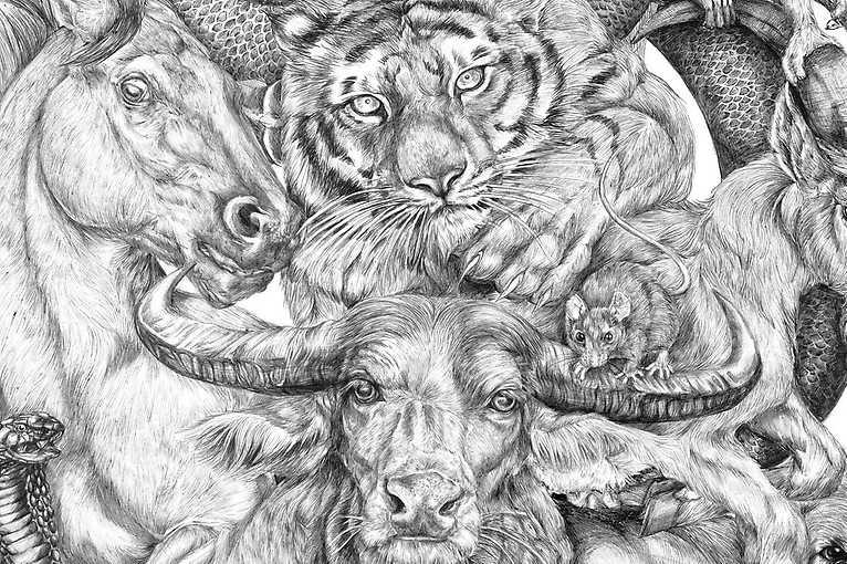 Kresba živého zvířete pro každého