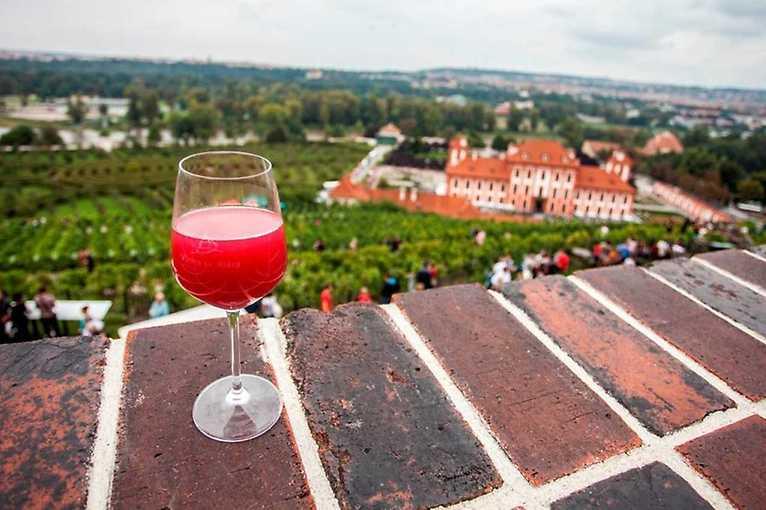 Vínečko fest 2019: Víno na vinici