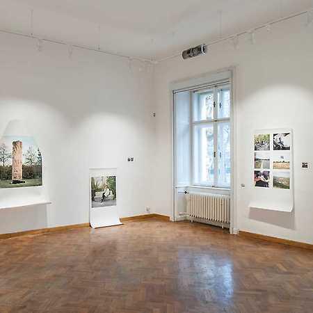 Galéria Medium