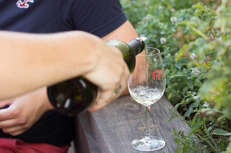 Víno z blízka: Večer s Ekovínem