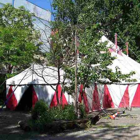 Circus Schatzinsel