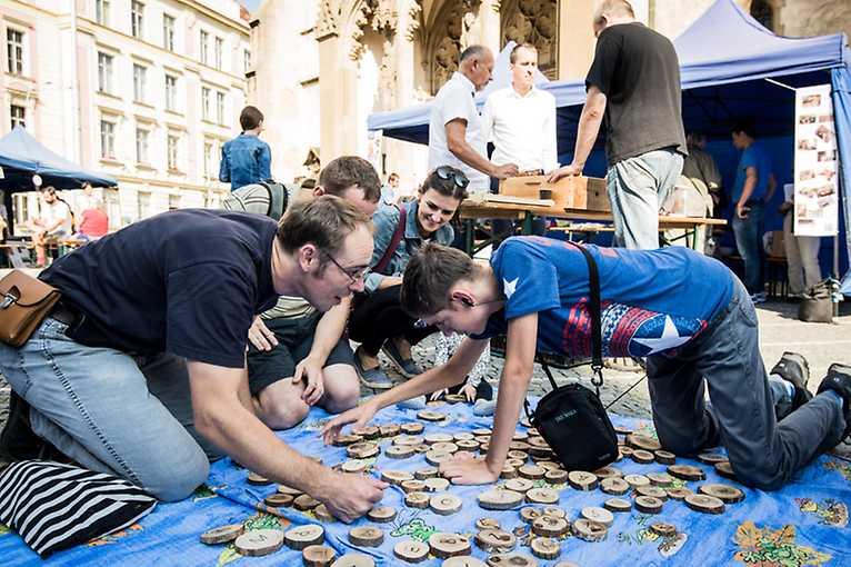 Zažít Strossmayerovo náměstí jinak 2019