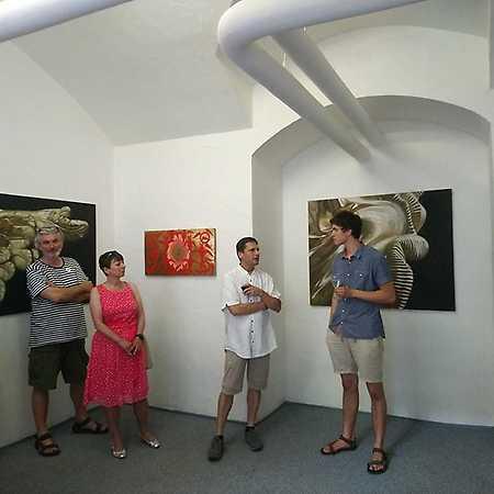 Jan Čejka Gallery