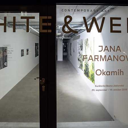 Galéria White & Weiss