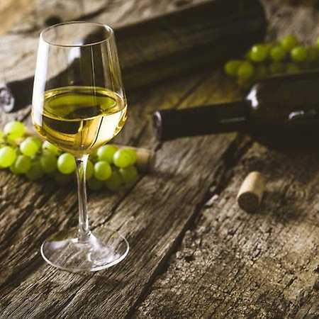 Slavnosti vína – Nové Beaujolais