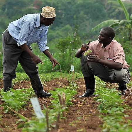 Uganda na vlastní pěst