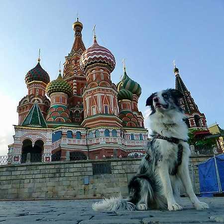 Slávek Král: Stopem se psem v Asii