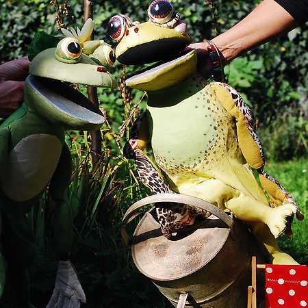 Žabí příběhy