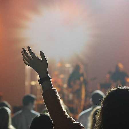Blues Rock Fest 2020: Livin Free