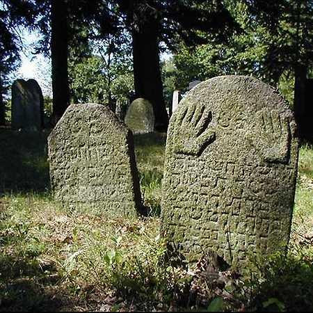 Václav Fred Chvátal: Židovské hřbitovy v Kasejovicích