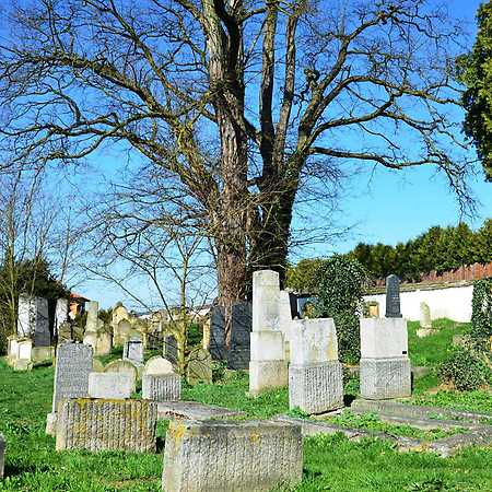 Václav Fred Chvátal: Židovské hřbitovy – Spálené Poříčí