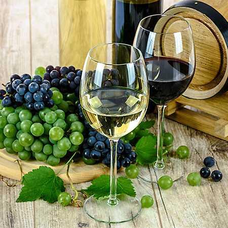 Bulharské vinařství Katarzyna Estate