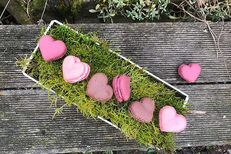 Valentýn v Piknik boxu