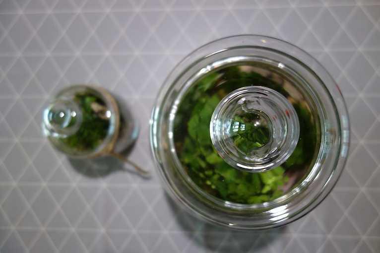 Mikro Ziemia w Szkle: Warsztaty florystyczne