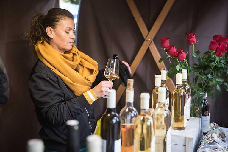 Plzeňský festival vína – jaro 2020