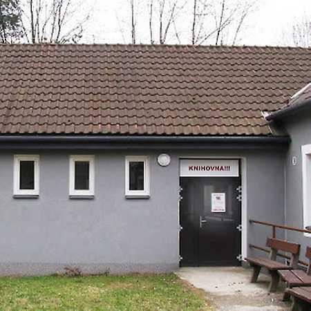 Knihovna Radvanice