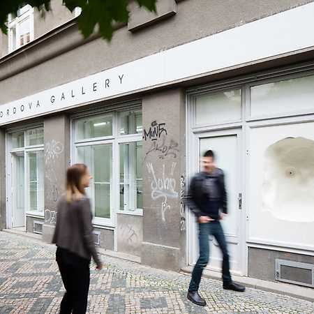 Lucie Drdova Gallery