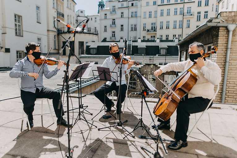 Hrajeme do oken: Amadeus String Trio + Zrní